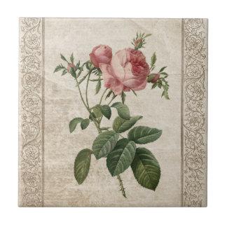 Vintage Rose III - Fliese