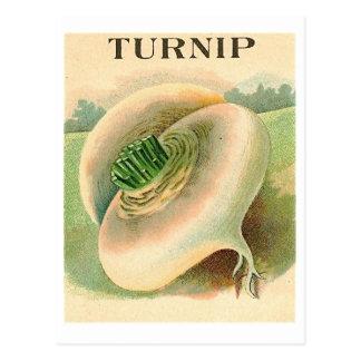 Vintage Rübesamen-Paketpostkarte Postkarte
