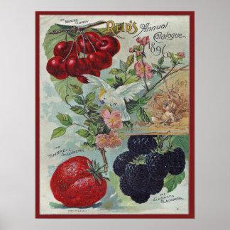 Vintage Samenkatalogabdeckung Poster
