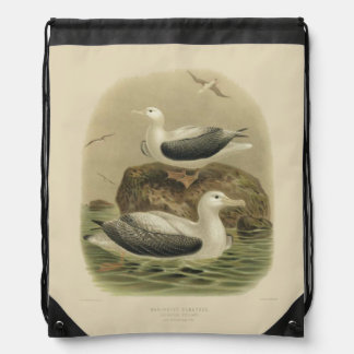 Vintage Seevogel-wandernde Albatrosse der Turnbeutel