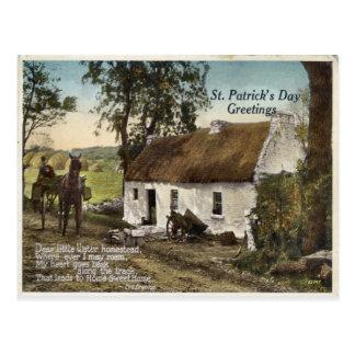 Vintage thatched Postkarte Hütte St. Patricks