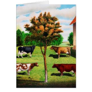 Vintage typische Kuh-Zucht auf dem Bauernhof Karte