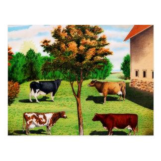 Vintage typische Kuh-Zucht auf dem Bauernhof Postkarte