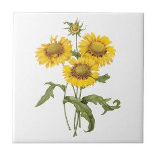 Vintage umfassende Blumen-mit Blumensonnenblume Kleine Quadratische Fliese