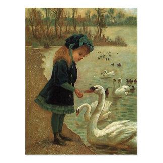 VINTAGE VIKTORIANISCHE Fütterntrumpeter-Schwäne Postkarte