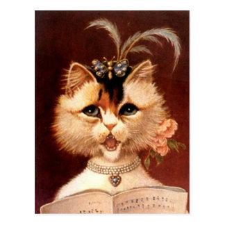 Vintage viktorianische Partor Katze in der Postkarte