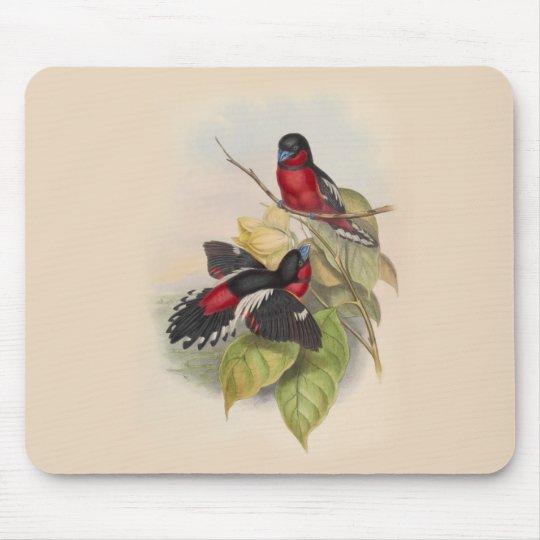 Vintage Vögel 002 Mousepads