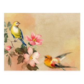 Vintage Vogel-Postkarte Postkarte