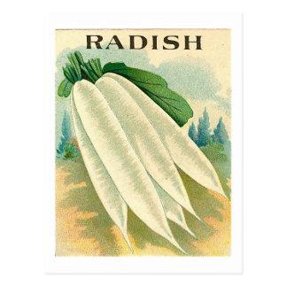 Vintage weiße Rettichsamen-Paketpostkarte Postkarte