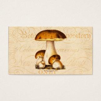 Vintager 1800s Pilz-essbare Pilz-Schablone Visitenkarten