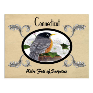 Vintager Blick-alte Postkarte Connecticut