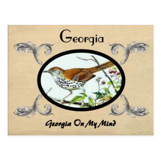 Vintager Blick-alte Postkarte Georgia Stste