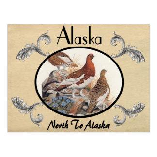 Vintager Blick-alter Postkarten-Alaska-Staat Postkarte