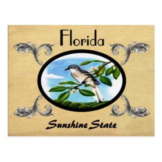 Vintager Blick-alter Postkarten-Florida-Staat Postkarte