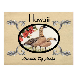 Vintager Blick-alter Postkarten-Hawaii-Staat Postkarte
