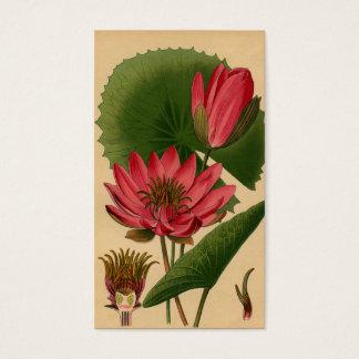 Vintager botanischer visitenkarte