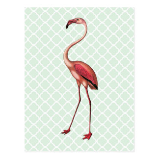 Vintager Flamingo auf tadelloser Quatrefoil Postkarte
