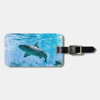 Vintager Haifisch-Gepäck-Umbau Kofferanhänger