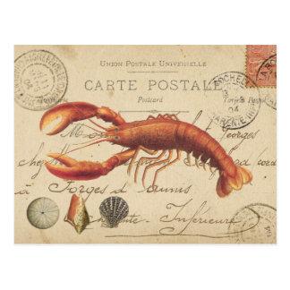 Vintager Hummer und Seashellspostkarte Postkarte