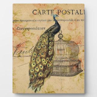 Vintager Pfau des französischen botanischen Fotoplatte
