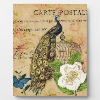 Vintager Pfau französischen botanischen Rose Fotoplatte