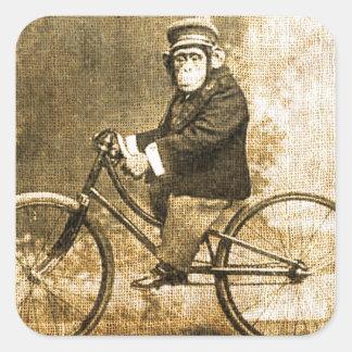 Vintager Schimpanse auf einem Fahrrad Quadrat-Aufkleber
