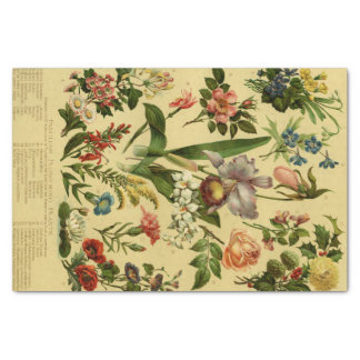 Vintages botanisches Blumen Seidenpapier