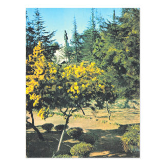 Vintages Frankreich Korsika,    Monument zu Postkarten