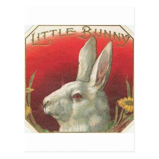 Vintages kleines Häschen-Kaninchen Postkarte