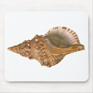 Vintages Marinelebens-Ozean-Tier, TritonSeashell Mauspads