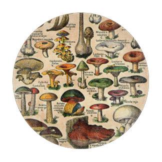 Vintages Pilz-Illustrations-Glasschneiden-Brett