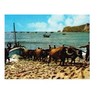 Vintages Portugal,    Nazare, Fischerboote auf den Postkarte