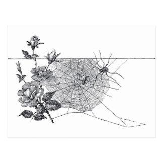 Vintages Spinnen-Netz und Rose Postkarte