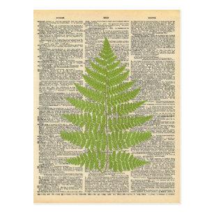 Vintages Wörterbuch Art Green Fern Frontend Postkarte