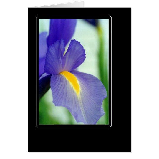 violette Iris Grußkarte