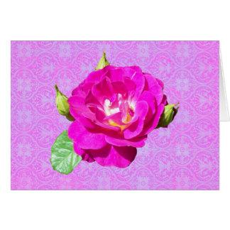 Violetter Rosen-Damast Grußkarte
