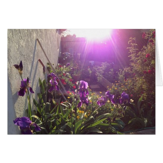 Violettes Feuer durch Harmonie Grußkarte