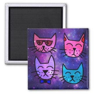 Visages frais de chat sur un arrière - plan de magnet carré