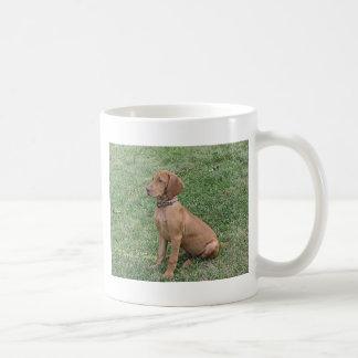 Vizsla Welpen-Sitzen Kaffeetasse