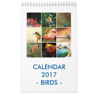 Vögel Abreißkalender