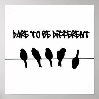Vögel auf einem Draht - trauen Sie sich, unterschi Posterdrucke