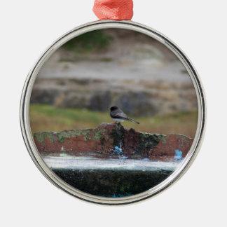 Vogel auf einer Wand Silbernes Ornament