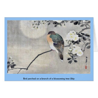 Vogel hockte auf einer Niederlassung eines Grußkarte