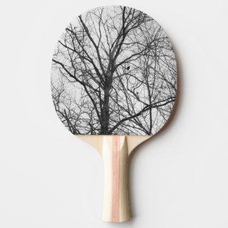 Vogel in einem Baum-Klingeln pong Paddel Tischtennis Schläger