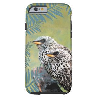 Vögel Iphone Fall Tough iPhone 6 Hülle