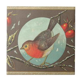 Vogel Kleine Quadratische Fliese