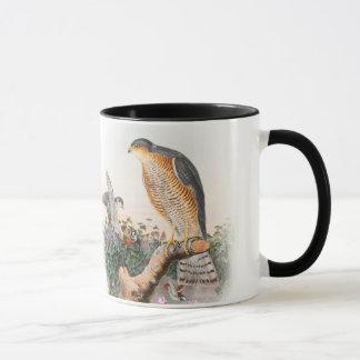 Vögel Spatzen-Falke-Johns Gould von Großbritannien Tasse