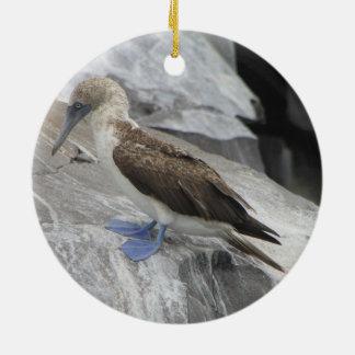 Vogel-Verzierung