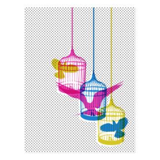 Vogelkäfig-Entweichen Postkarte