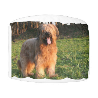 volles briard hocker